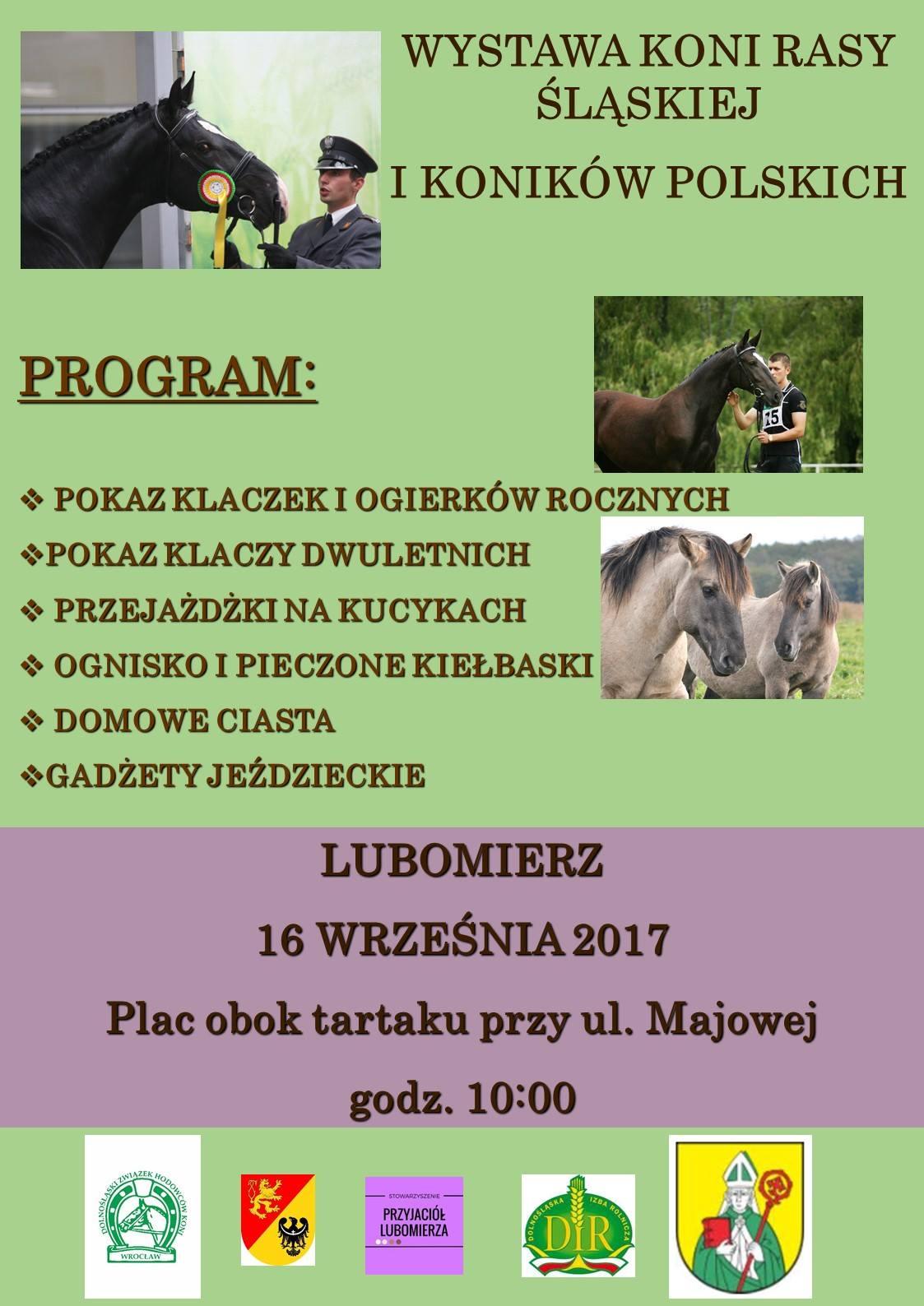 Wystawa Hodowlana Młodzieży Rasy Śląskiej i Konik Polski  16.09.2017 – Lubomierz