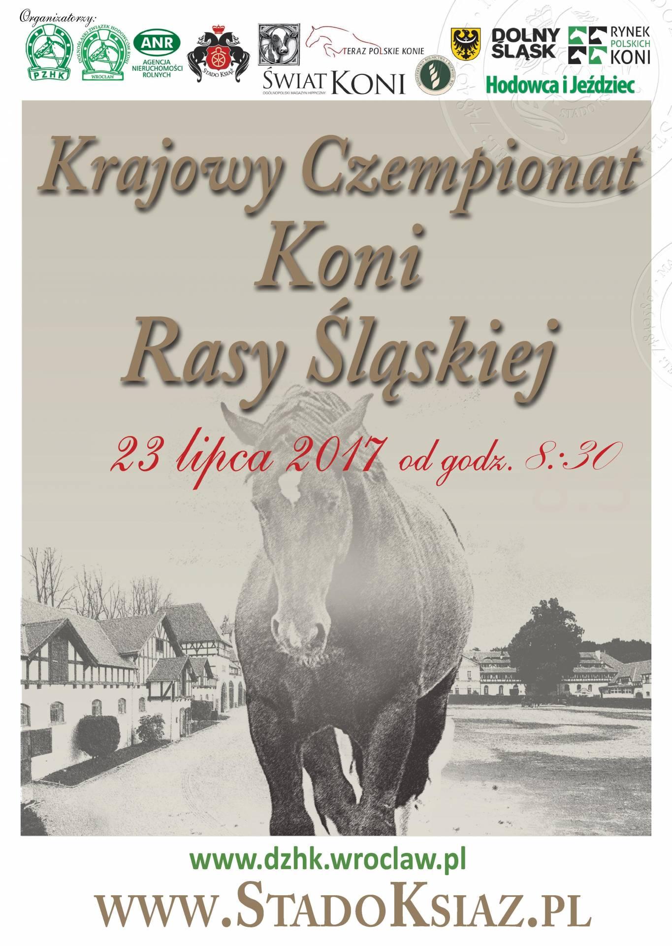 XIII Krajowy Czempionat Młodzieży Koni Rasy Śląskiej  23.07.2017 – SO Książ