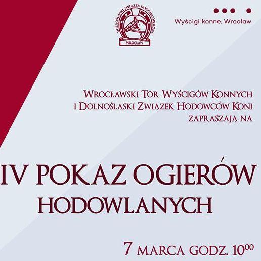 Pokaz ogierów hodowlanych-Partynice 07.03.2020