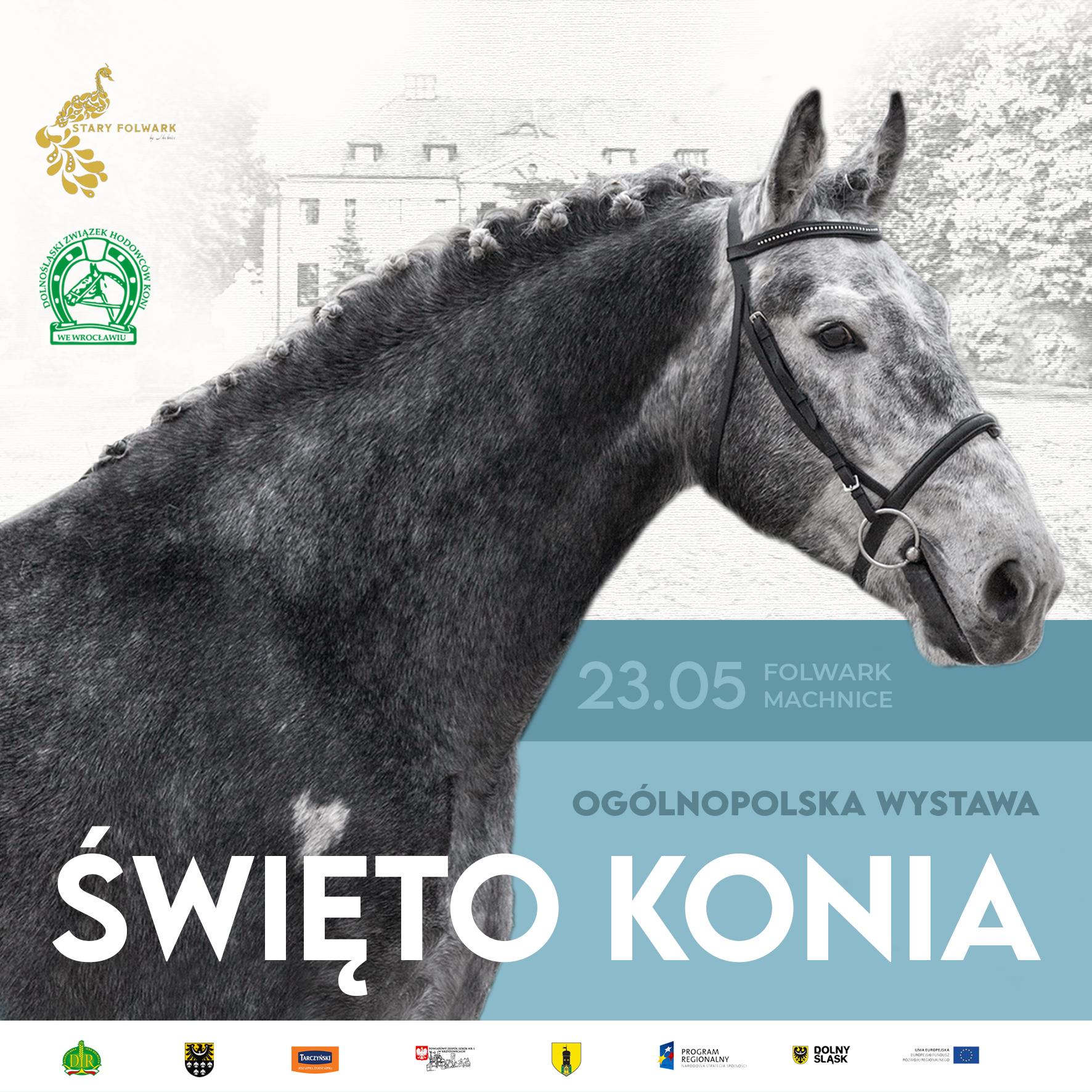 Święto Konia – Wystawa Młodzieży Hodowlanej